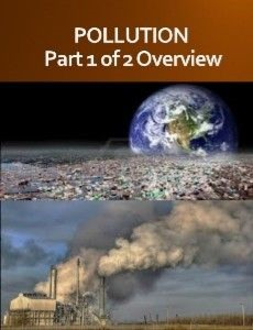 POLLUTION Part 1 of 2 Overview